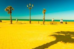 Palm trees along the coast in Cadiz at beautiful sunny day. Stock Photo
