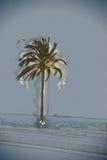 Palm trees along the coast in Palma de Mallorca Royalty Free Stock Images