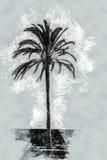Palm trees along the coast in Palma de Mallorca Royalty Free Stock Photo