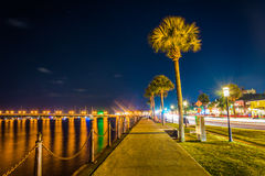 Palm trees along a path along the Matanzas River at night in St. Augustine, Florida Stock Photos