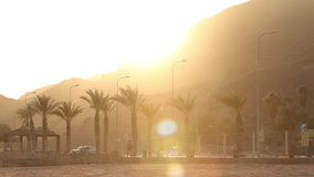 Palm trees along the road at sunset, palm trees on a background of mountains, the sun sets over the mountain in a. Tropical country, sun, orange, sunbeam stock video