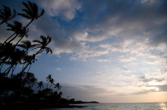 Palm trees of Anaehoomalu Beach during sunset Royalty Free Stock Images