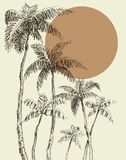Palm trees background vector illustration