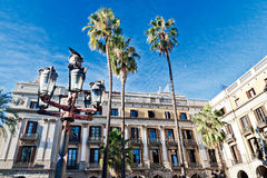 Palm trees in Barcelona. Palm trees at Placa Reial, Barcelona Royalty Free Stock Images