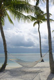 Palm trees on beach. Hammock hanging in palm trees on the beach Royalty Free Stock Images