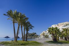 Palm trees on a beach in Almunecar, Andalusia region, Costa del Sol, Spain. Palm trees on a beach in Almunecar in Andalusia region, Costa del Sol, Spain stock image