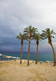 Palm trees and beach canopies in a thunder-storm Royalty Free Stock Images