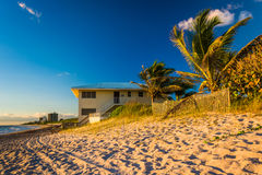 Palm trees and beach house on Jupiter Island, Florida. Stock Photo