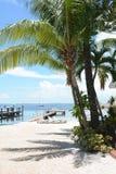 Palm trees beach resort Stock Image
