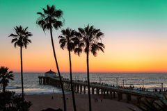 Palm trees on the beach at sunset. Stock Image
