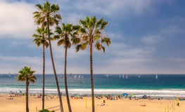 Palm trees on a beach and yachts at ocean. In Manhattan Beach. People enjoy in the Los Angeles Royalty Free Stock Photography