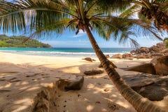 Palm trees on beautiful beach at Seychelles, Mahe Royalty Free Stock Photography