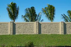 Palm trees behind wall on top of hill Stock Images