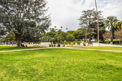 Palm trees at Beverly Gardens Park Stock Images