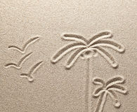 Palm trees and birds are drawn on sea sand Royalty Free Stock Images