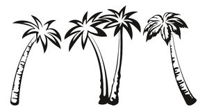 Palm Trees Black Pictograms Stock Image