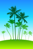 Palm trees on blue sky background Stock Photography