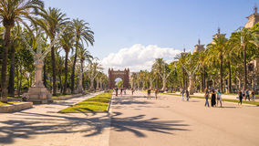 Palm trees on the boulevard in Barcelona Royalty Free Stock Image
