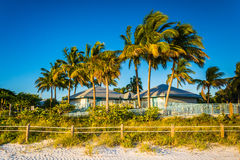 Palm trees and building on the beach in Fort Myers Beach, Florid Stock Photo