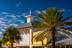 Palm trees and building in Vilano Beach, Florida. Stock Photos
