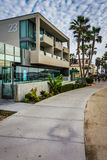 Palm trees and buildings along a walkway  Stock Images