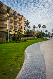 Palm trees and buildings along a walkway  Royalty Free Stock Image