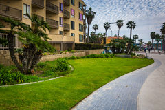 Palm trees and buildings along a walkway at Pacific Beach  Stock Image