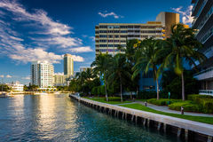 Palm trees and buildings on Belle Isle, in Miami Beach, Florida. Royalty Free Stock Photo