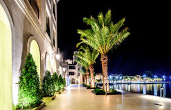 Palm trees and the buildings in the night lights in Marina Porto. Montenegro, Tivat, Montenegro, Europe Royalty Free Stock Photography