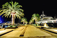 Palm trees and the buildings in the night lights in Marina Porto. Palm trees and the buildings and yachts in the night lights in Marina Porto Montenegro, Tivat Royalty Free Stock Photography