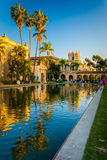 Palm trees and buildings reflecting in the Lily Pond  Stock Photos