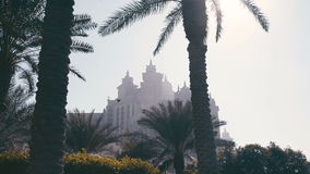 Palm trees and buildings in the United Arab Emirates. Panorama from down to up. Palm trees and buildings in the United Arab Emirates. Silhouette of an old stock video footage