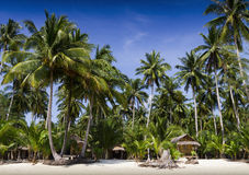 Palm trees and bungalow on the beach Stock Photography