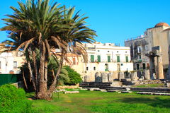 palm trees and byzantine place Royalty Free Stock Image