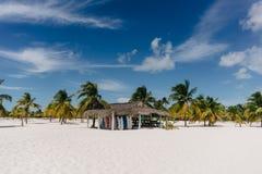 Palm trees on the Caribbean Sea on the sand beach of Cayo Largo, Cuba Stock Photography