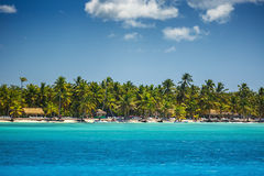 Palm trees and Carribean sea. Palm trees, tropical beach and Carribean sea Stock Photography