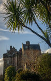 Palm Trees and Castle. Palm Trees in the Gardens of a Castle in Scotland Royalty Free Stock Image