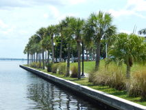 The Palm Trees of Charlotte Harbor. Looking into the bay of the Port Charlotte Harbor from Punta Gorda Pier Stock Photo