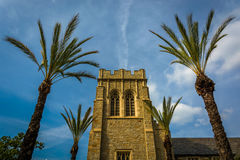 Palm trees and church in Pasadena  Royalty Free Stock Photo
