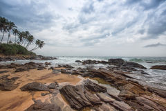 Palm trees on coastline of Galle, Sri Lanka Royalty Free Stock Photos