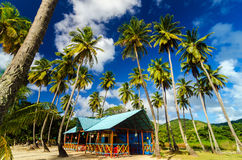 Palm Trees and Colorful Building Stock Images