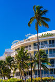 Palm trees and condominiums in Palm Beach, Florida. Royalty Free Stock Photos