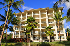 Palm trees and condos, Maui royalty free stock photography