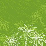 Palm trees contours on green background Royalty Free Stock Photos