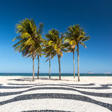 Palm trees on Copacabana beach Stock Photos