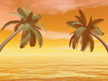 Palm trees - 3D render Stock Photos