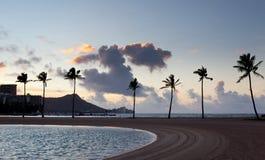 Palm trees at dawn in Waikiki Royalty Free Stock Photo