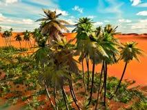 Palm trees on desert Royalty Free Stock Image