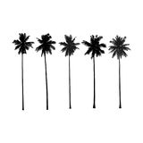 Palm trees. Detailed  illustration Royalty Free Stock Photography
