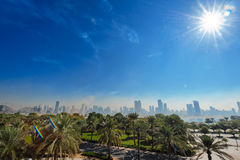 Palm trees and distant view of the city Royalty Free Stock Images